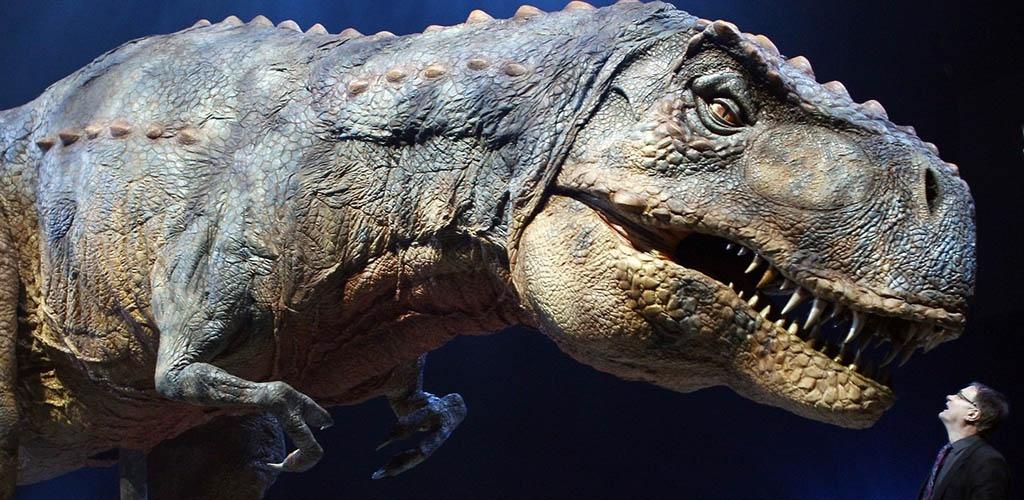Tiranozaurai nebūtų galėję iškišti liežuvio, nustatė mokslininkai