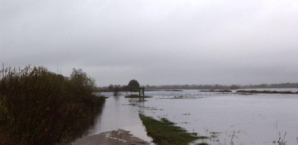 Dėl potvynio kelyje į Rusnę ruošiamasi skelbti ekstremaliąją situaciją