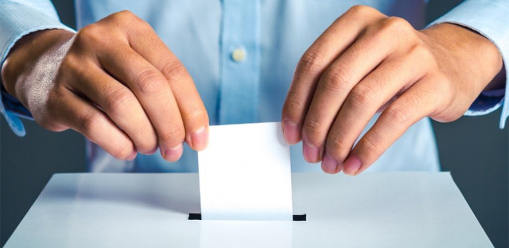 Baigiasi Seimo rinkimų pareiškinių dokumentų priėmimas