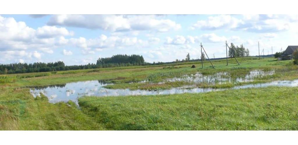 Vilniaus rajono savivaldybė parems nukentėjusius nuo meteorologinių reiškinių