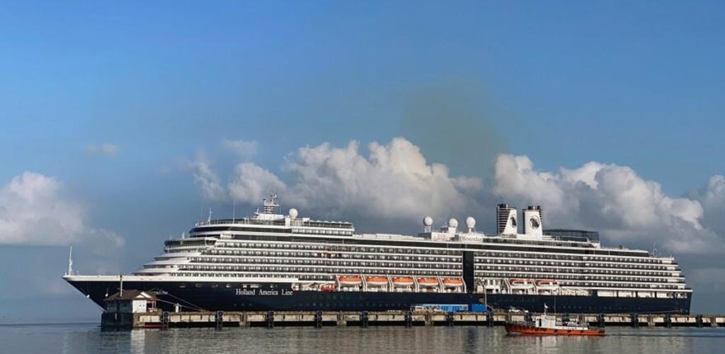 Po dviejų savaičių karantino keleiviai išleidžiami iš kruizinio laivo Japonijoje