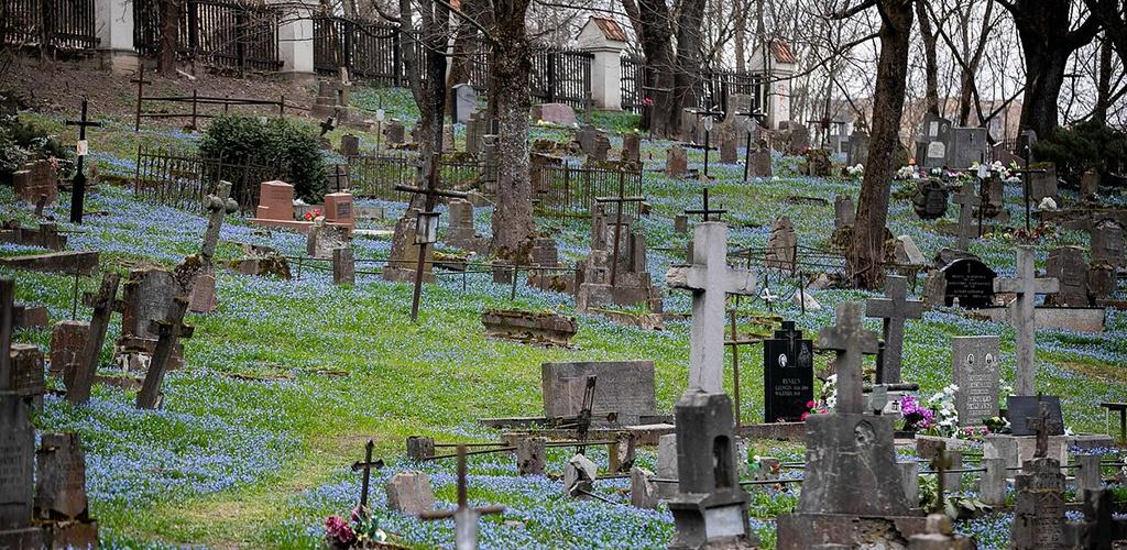 Klaipėda pirmoji Lietuvoje skaitmenizavo kapines
